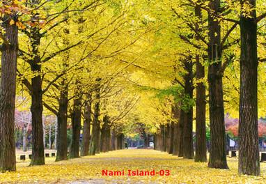 Nami Island-03.jpg