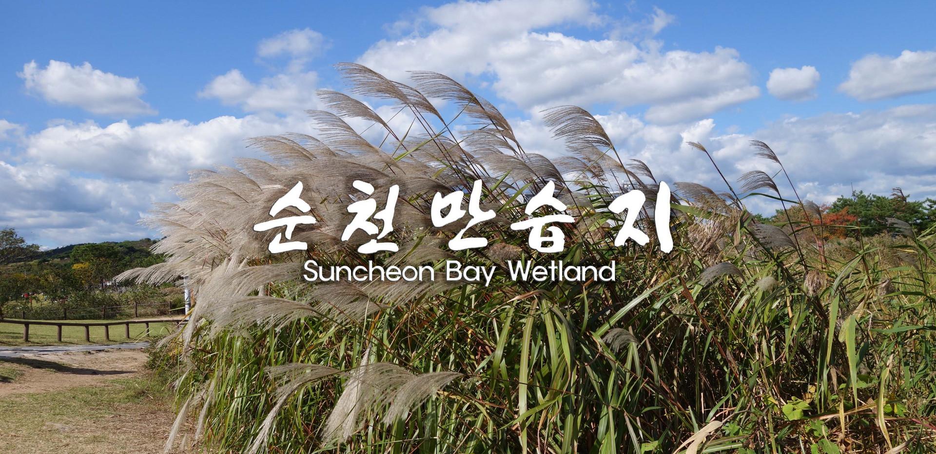 Suncheon Suncheonman Bay-01.jpg