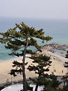 Gyeongpodae-04.jpg
