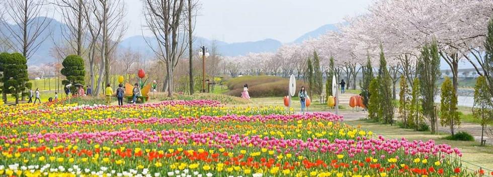 Suncheonman park-02.jpg