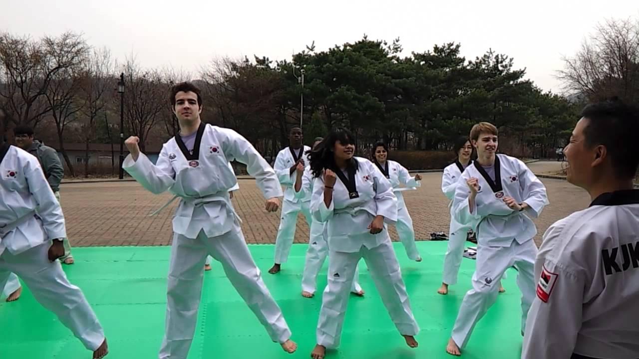 Learn Korean Martial art Taekwondo-02.jp