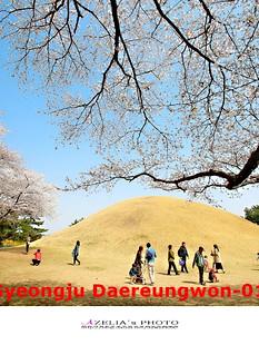 Gyeongju Daereungwon-01.jpg