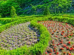 sangsoo herb-01.jpg