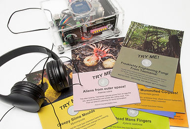 Tasmanian fungi in a box - fungi education for children