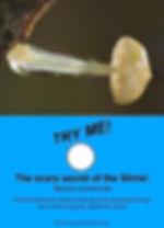 Scary Secret of the Slime - Freakishly Frightening Fungi From Tasmania