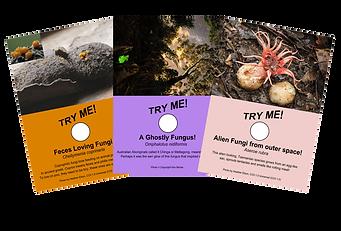Freakishly Frightening Fungi From Tasmania - free fungi education resources for kids