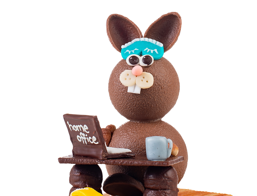 Bio Home Office Hase