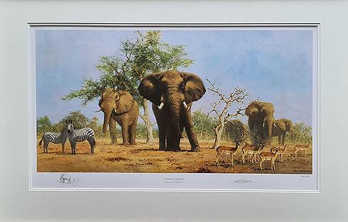 davidshepherd-africanlandscape-framed_edited.jpg