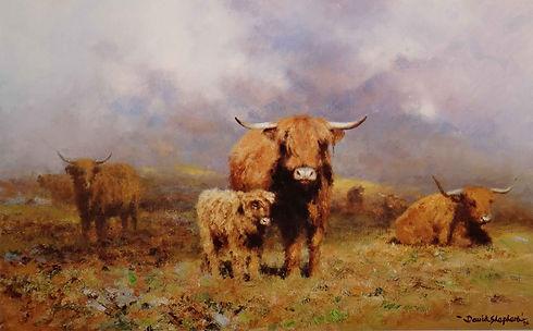 davidshepherd-highlandmist-large.jpg