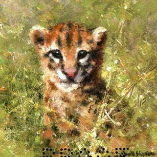 Ocelot cub cameo