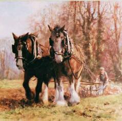 Plough Team