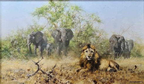 davidshepherd-original-elephantsandlion-framed1_edited.jpg