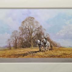 Spring Ploughing