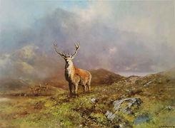 davidshepherd-princeofrannochmoor.jpg