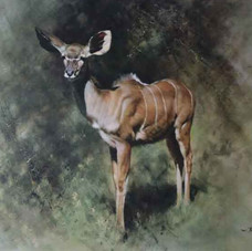 davidshepherd-kudu_edited.jpg
