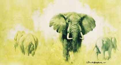 Elephant (Big Five collection)