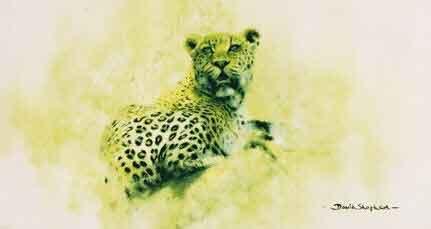 Leopard (Big Five collection)