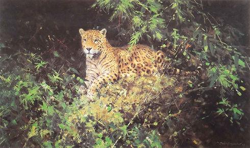 davidshepherd-Jaguar-large.jpg