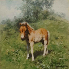 When I grow up I want to be a Cart Horse