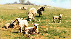 davidshepherd-countrycousins.jpg
