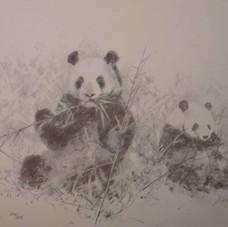 davidshepherd-pandas2006-large.jpg