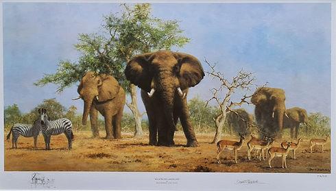 davidshepherd-africanlandscape-large.jpg