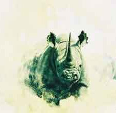 Rhino (Bige Five Collection)