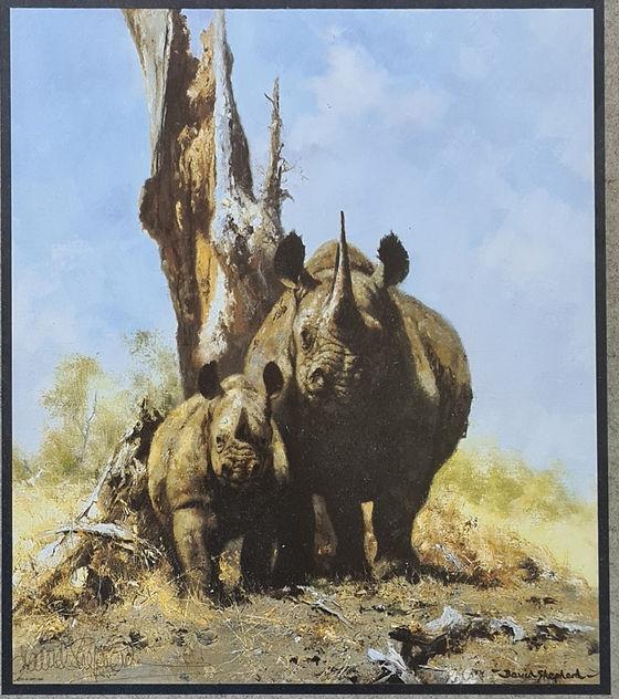 davidshepherd-rhinossigned-large.jpg
