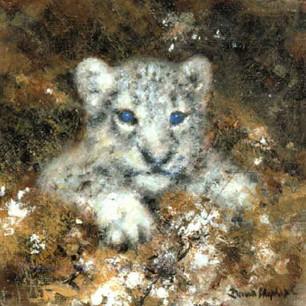 Snow Leopard cub cameo