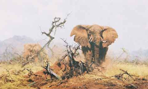 Elephant and the anthill