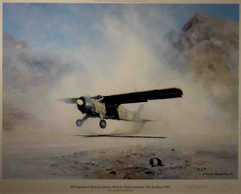 davidshepherd-653squadronbeaver-large.jp