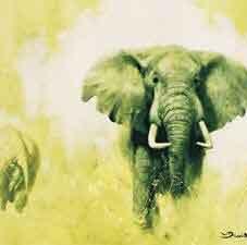 Elephant (The big five)
