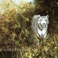 White Tiger of Rewa
