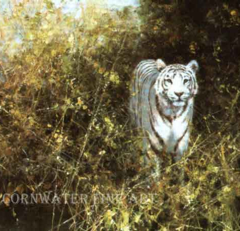 White Tiger of Rewa
