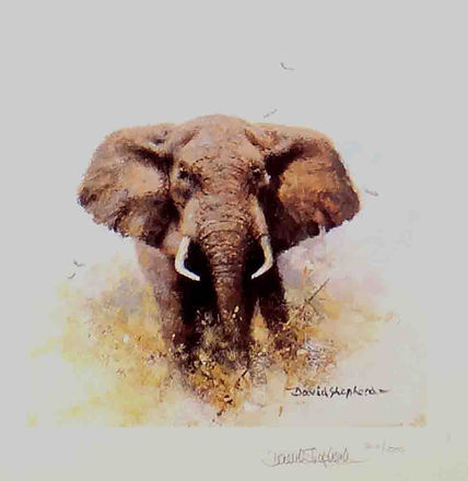 davidshepherd-elephant-cameo-large.jpg