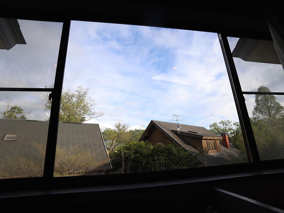 203 CROP view.jpg