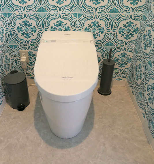 201 Toilet P1010372.jpg