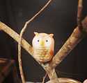 Ornament - tree owl.jpg