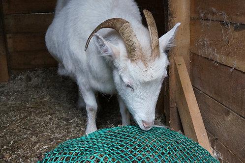 Медленная кормушка Для коз и пони (рептух)