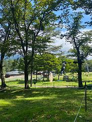 アミーチアドベンチャー軽井沢 樹上のアスレチック ツリートレッキング 初級 ジップライン