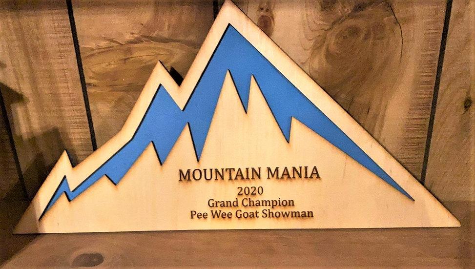 Mountain Shape Award / Trophy