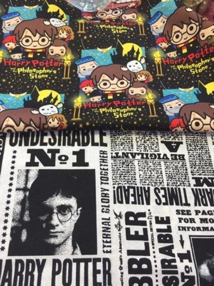 Harry Potter project bag philosopher stone/newspaper