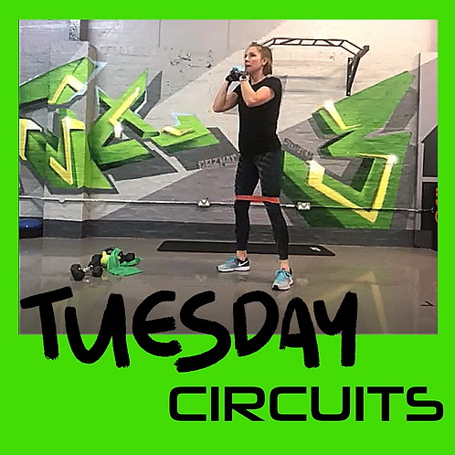 TUESDAY CIRCUITS 23.02.21