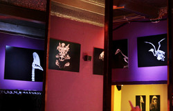 ZooSchanke-Exhibition-Elerinna_Heise