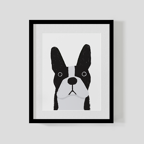 Boston Terrier Print A4
