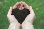 Soil Tests, Organic Lawn Care