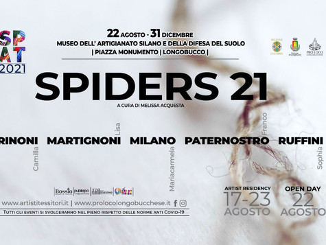 Spiders 21 | Artisti tessitori