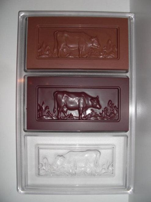 Profi Schokoladenform ANTON REICHE Artikel Nr. 22836