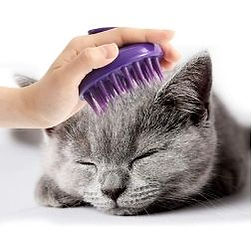 cat brush.jpg
