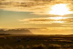 Iceland_23.jpg
